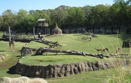 emirates zoo timing dubai zoo dubai reviews ticket price timings