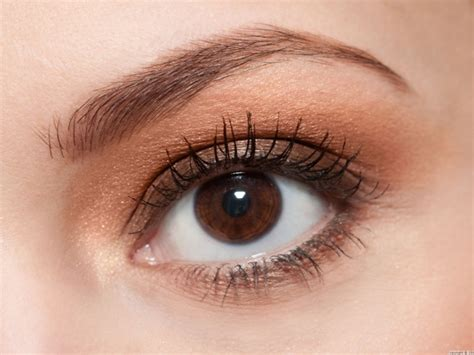 chica bella beauty salon plymouth eyebrow tinting chica bella beauty salon plymouth