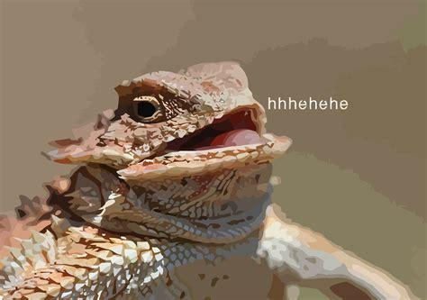 Hehehe Lizard Meme - quot hhhehehe quot art prints by crashin redbubble