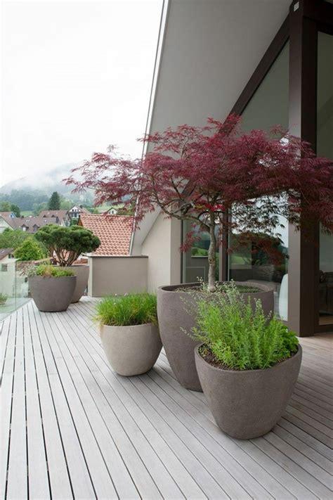 terrassengestaltung mit pflanzen terrassen und gartengestaltung durch pflanzen aufpeppen