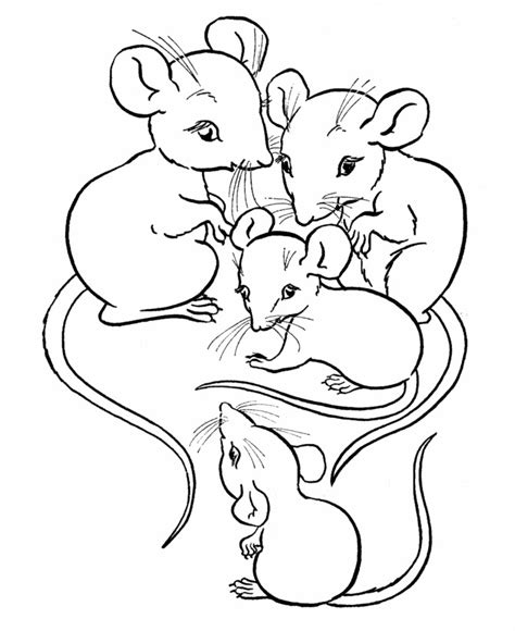dead rat coloring page free printable mouse coloring pages for kids