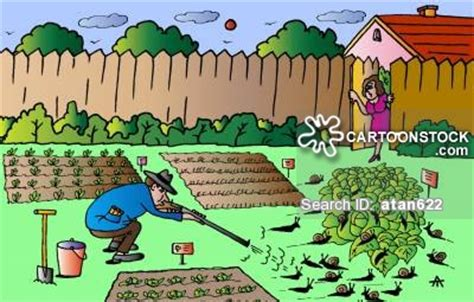garten comic organic gardening and comics pictures