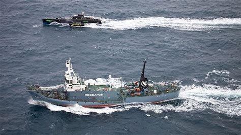 whale wars boats whale wars boat claims ram attempt herald sun