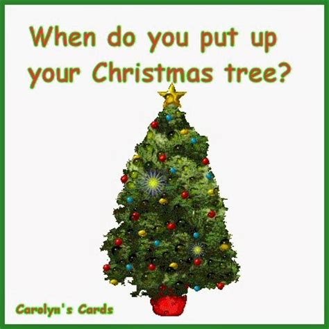 what date do you put your tree up open your is beautiful when do you put