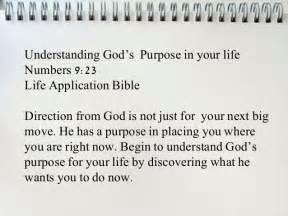 bible verses purpose