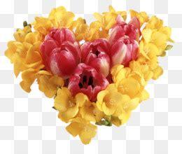 gambar png kartun indonesia bunga bingkai
