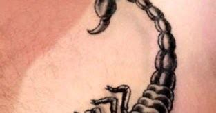 scorpion tattoo houston gallery pictures and designs free