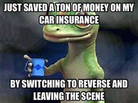 Car Insurance Meme - geico funny quotes quotesgram
