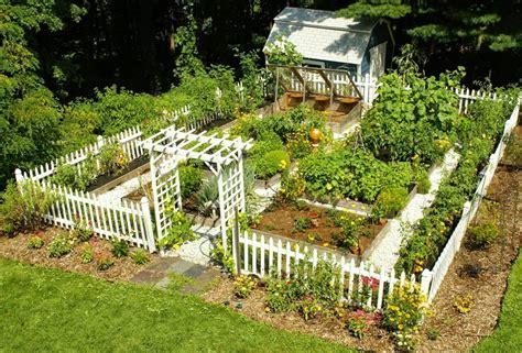 fare un orto in giardino come fare un orto in giardino