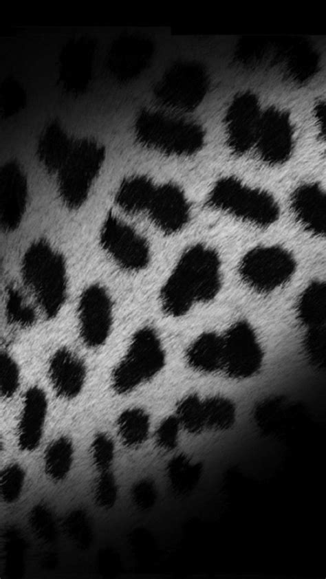 black and white leopard wallpaper black and white leopard skin iphone 6 6 plus and iphone