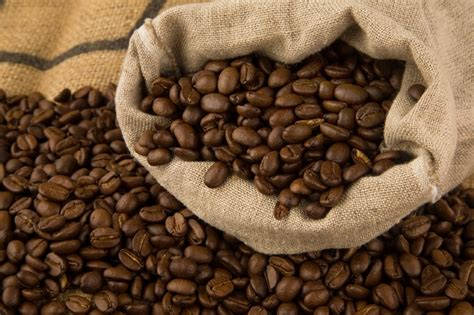 Simple Steps To Growing Coffee ? Even Where You Live   Off The Grid News
