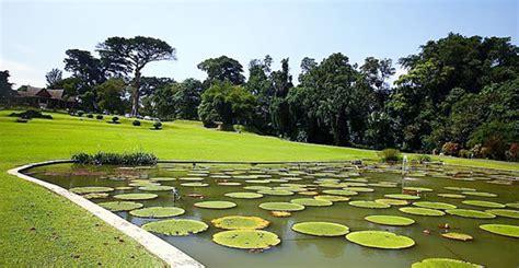 Bogor Botanic Garden Bogor Botanical Garden Destination Krakatau Indonesia