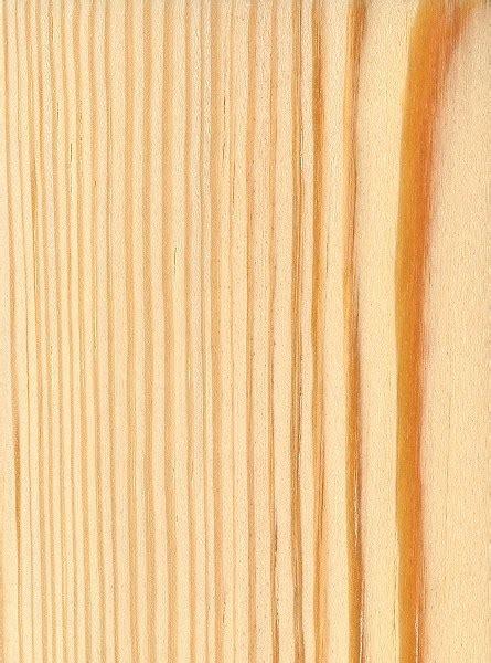 Kiefer Maserung by Longleaf Pine The Wood Database Lumber Identification