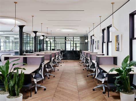 Canopy Sf The 8 Best Co Working Spaces In San Francisco Purewow