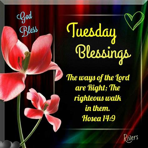 Pinterest Garden Craft Ideas - tuesday blessings pictures photos and images for facebook pinterest and twitter