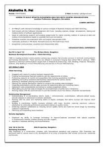 Resume Format For Business Analyst by Sle Business Analyst Resume Best Business Template