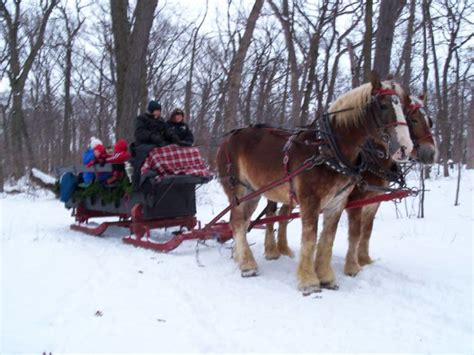 lake farm park christmas events 6 best places to take a sleigh ride in illinois winter 2017