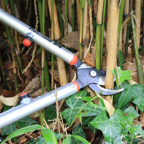 comment utiliser le bambou au jardin potager