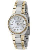 Fossil Colleague Three Am4183 fossil colleague two tone of pearl am4183