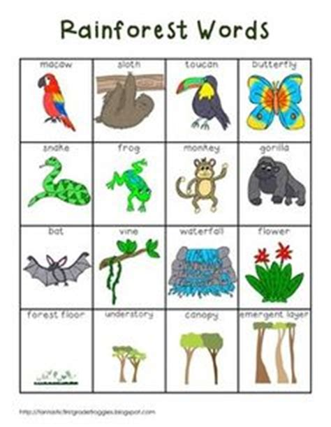 printable rainforest animal cards fall and autumn words improve english scavenger hunts