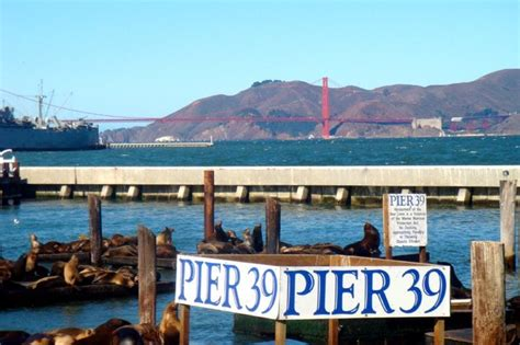 Pier 39 Parking Garage Coupon by Pier 39 2816 Photos 1054 Reviews Local Flavour The