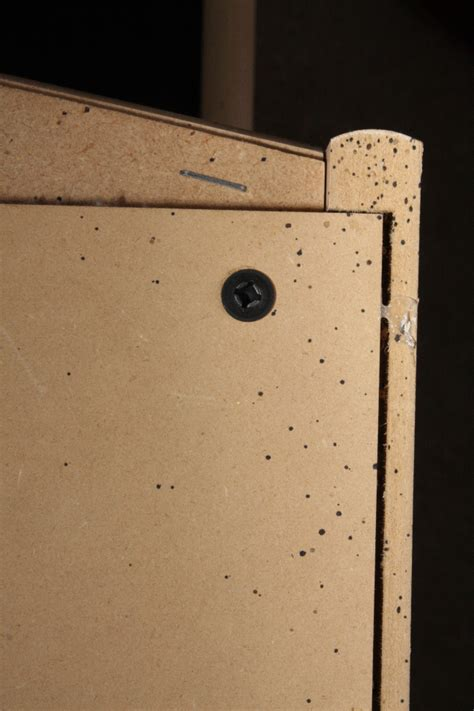 Bed Bugs Headboard by Fort Worth Bed Bug Fort Worth Bed Bug Elimination