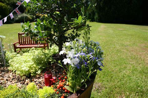 Garden Accessories Au Miniature Garden Accessories Collection Margarite Gardens