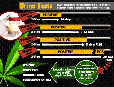 Detox Before Test by How To Pass A Test Detox Pills Pass A Urine