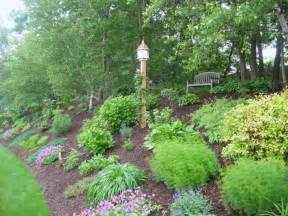 landscaping a hill slope landscaping landscaping pinterest rain the o
