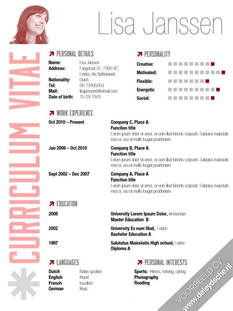 Cv Sjabloon Pages Musical Cv Images Frompo 1