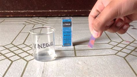Bases Make Litmus Paper Turn - vinegar on blue litmus paper