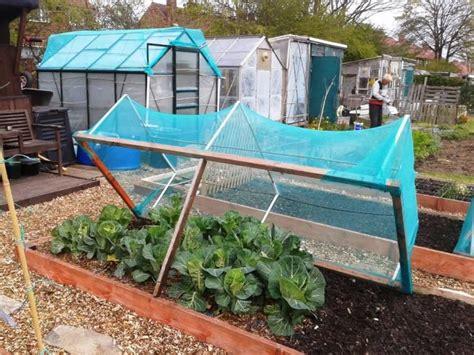 how netting for vegetable gardens is