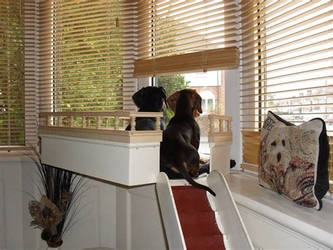 diy pet window seat this is someone who their dogs to build them a