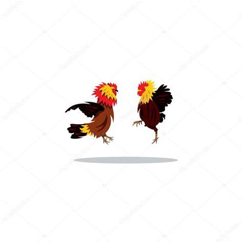 pelea de gallo s vector dos gallos peleando en salto archivo im 225 genes