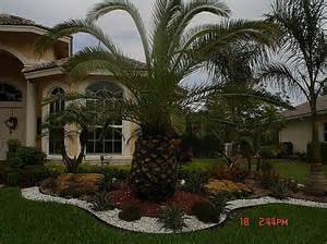 landscaping miami daughters nursery landscaping in miami fl