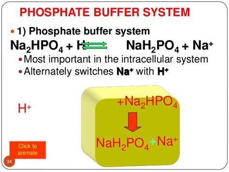 phosphate buffer related keywords phosphate buffer