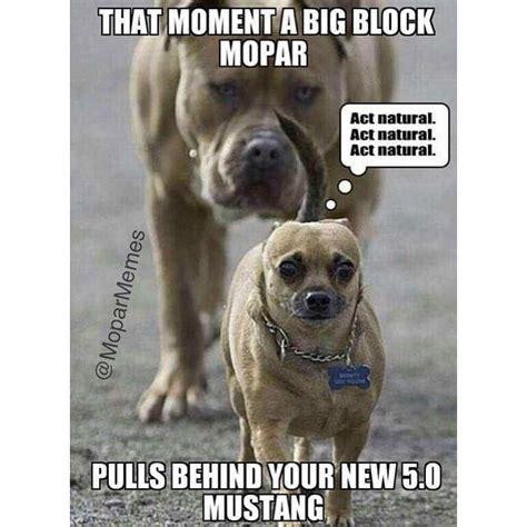 Mopar Memes - auto quote mopar memes on instagram this is true mopar moparmemes dodge charger hemi