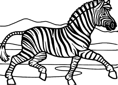 imagenes de cebras para dibujar faciles dibujos de cebras para colorear