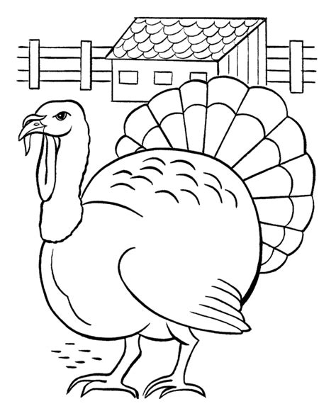 turkey pictures to color free printable turkey coloring pages for