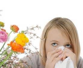 8 Tips For Dealing With Hayfever by 8 Tips For Coping With Hay Fever Health Essentials From