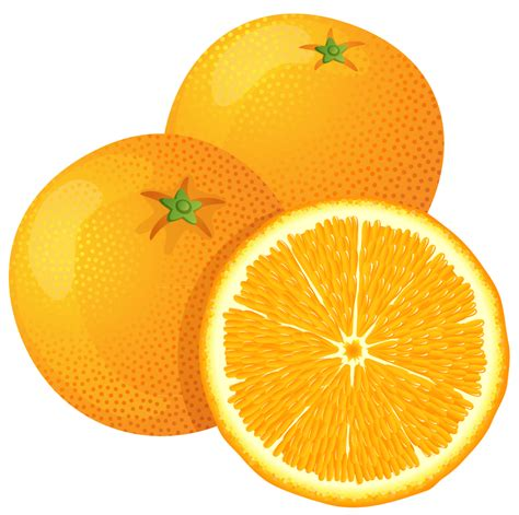 orange clipart orange tree clipart best
