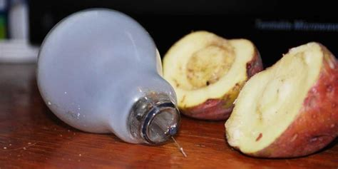 Potato Light Bulb by 16 Ingenious Uses For Everyday Household Item The Of