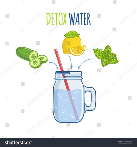 Detox Water Italiano by Detox Water Stock Vector 364438364