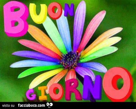 fiori di tutti i colori fiore con petali di tutti i colori buon giorno
