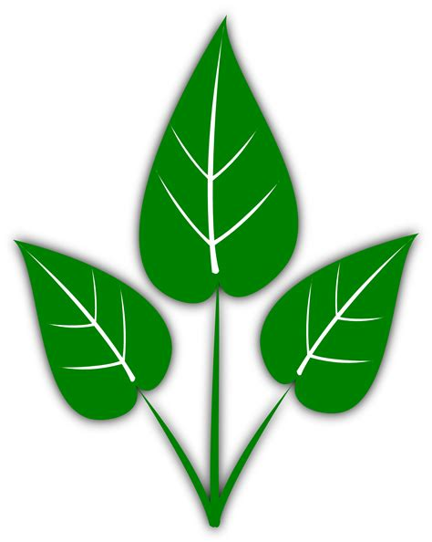 leaf clipart clipartist net 187 clip 187 gsagri04 green leaf clipartist