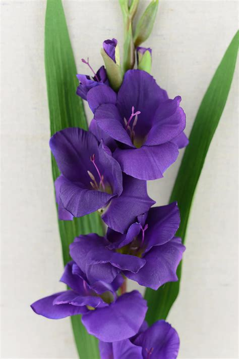 Escort Card Table Gladiolus Flower Purple 33in