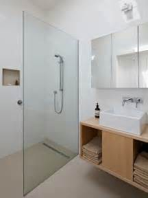 Best Glass Bathroom Partition Design Ideas & Remodel Pictures   Houzz