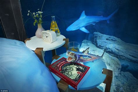 aquarium themed bedroom airbnb launches its first underwater bedroom where guests are surrounded by sharks