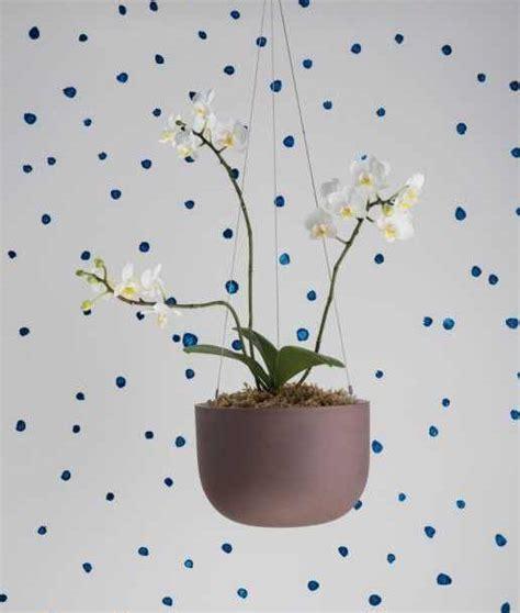 vasi sospesi per piante vasi sospesi per piante da appendere