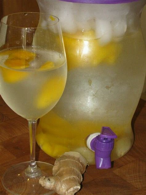 Paleo Detox Lemon Morning Drink by The Original Day Spa Apple Cinnamon Infused Water Recipe
